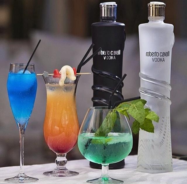 drinks para receber