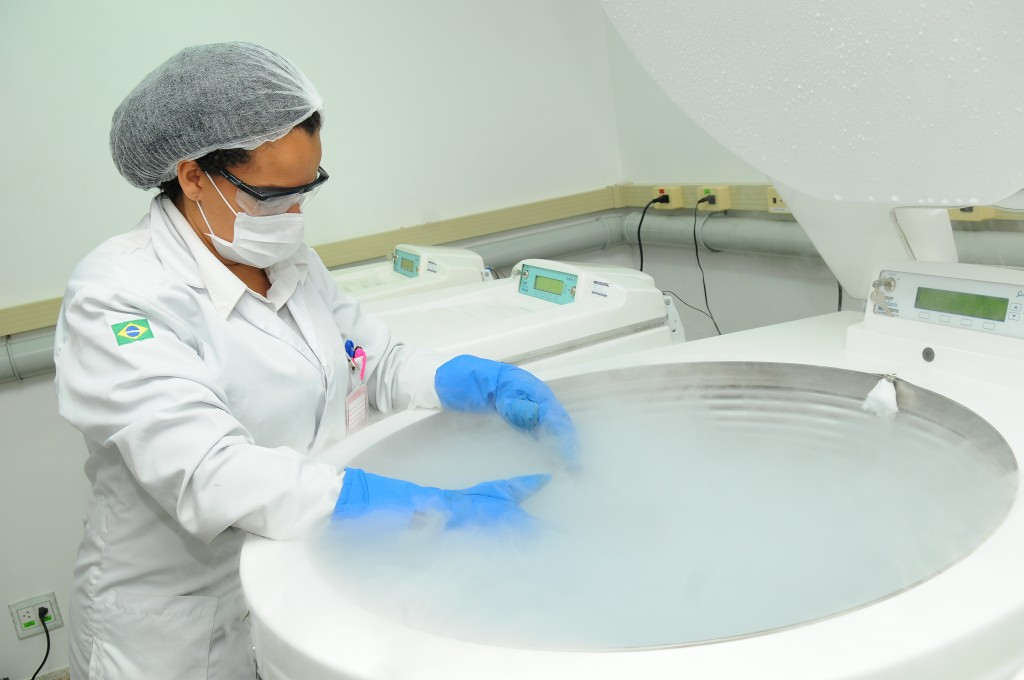congelamento de celulas tronco